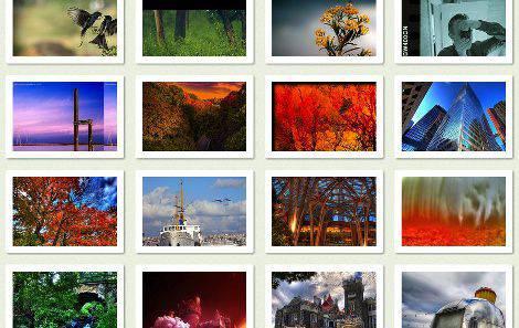 Exportar fotos Curacion de Contenidos | Microbio Comunicación