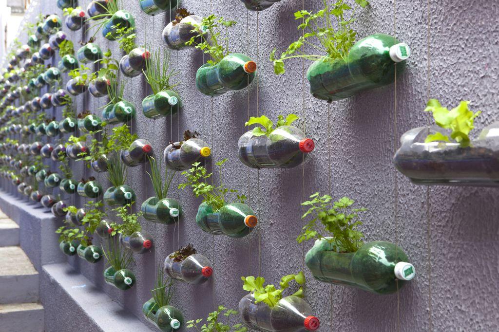 Jardin Urbano Vertical | Microbio Comunicación