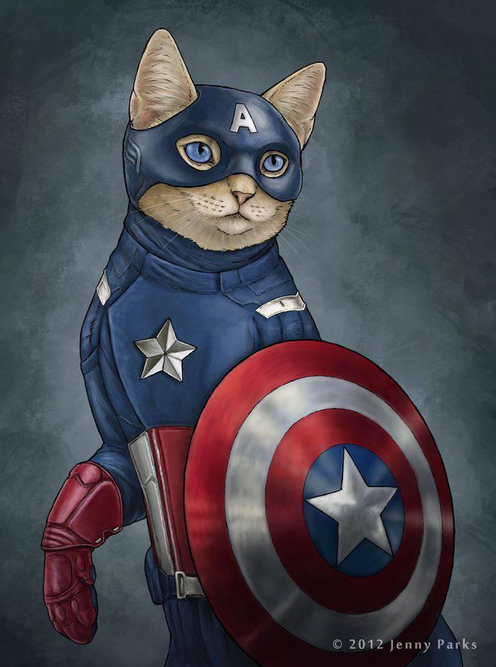 Gatos como Superheroes Capitán América | Microbio Comunicación