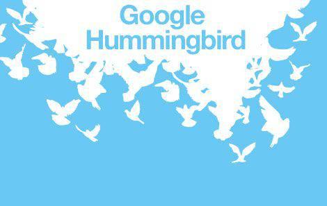 Google Hummingbird | Microbio Comunicación