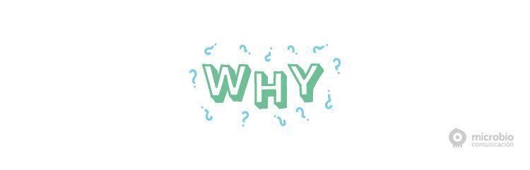 ¿Por qué cambiar el nombre de tu empresa? | Microbio Comunicación