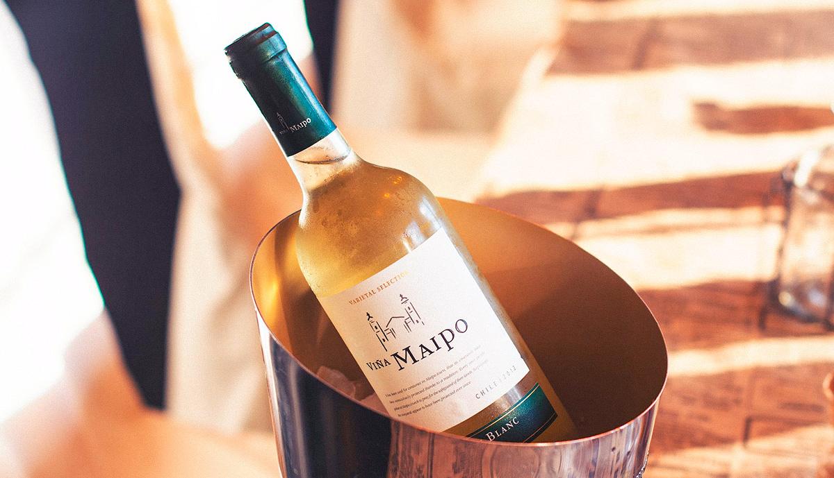 Diseños de vinos | Blog de Microbio Comunicación