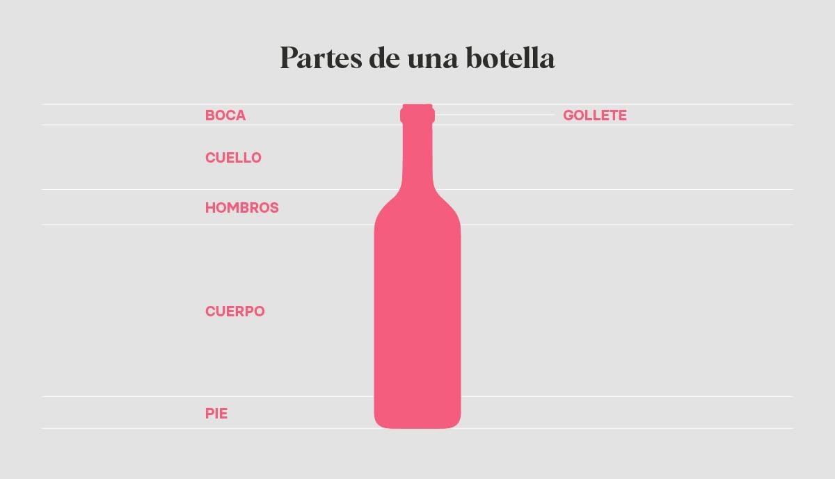 Partes de una botella de vino | Blog de Microbio Comunicación